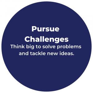 Pursue Challenges